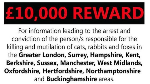 A £10,000 reward is being offered by Peta UK and Outpaced